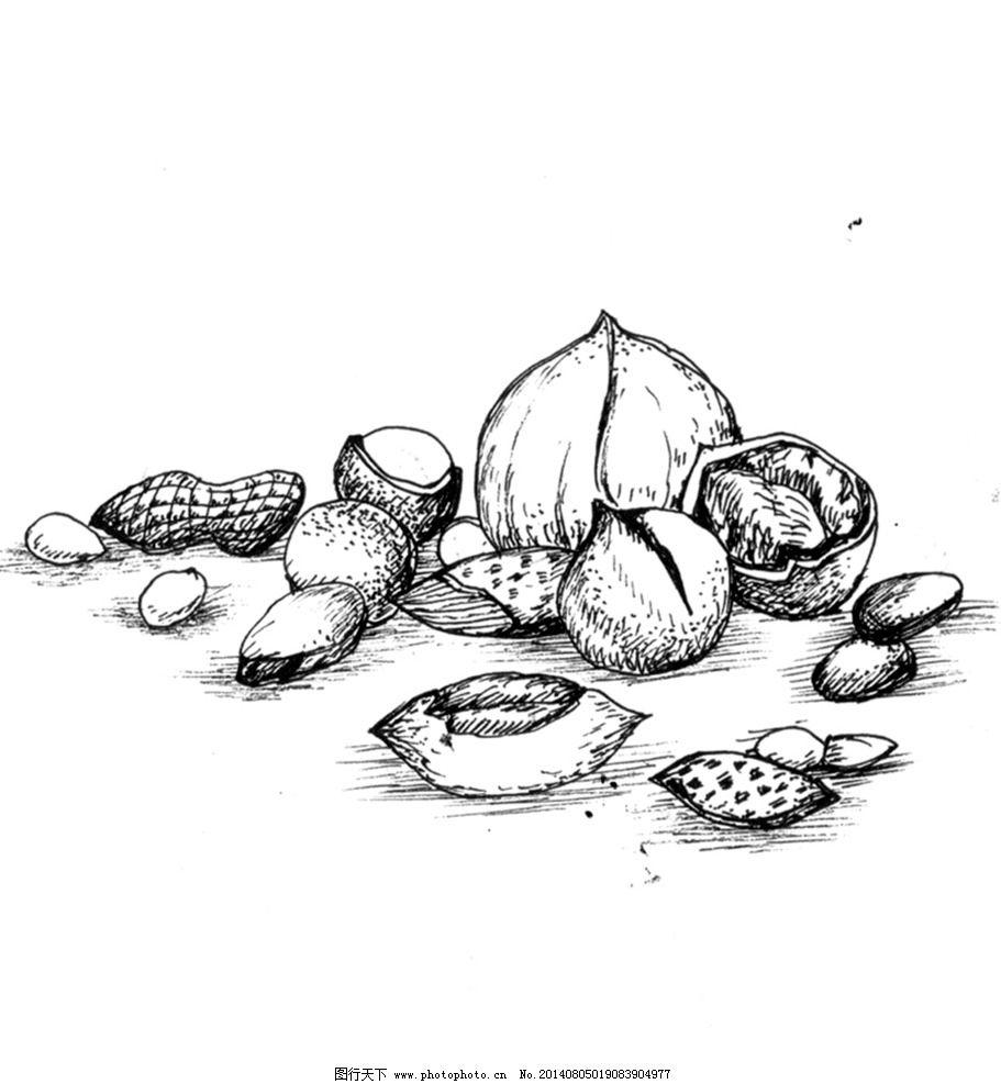 手绘坚果 手绘 素描 坚果 果仁 花生 核桃 绘画书法 文化艺术 设计 96