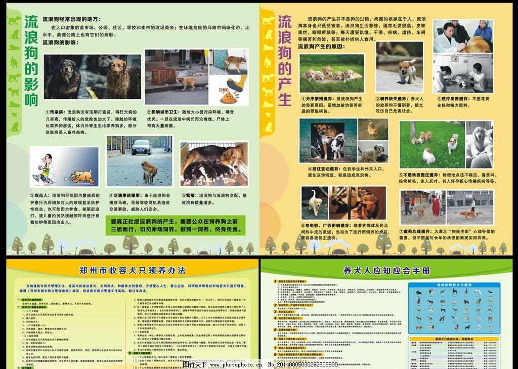 犬只知识 宠物乐园 狗 展板设计 动物展板 养狗知识 养狗展板 流浪狗
