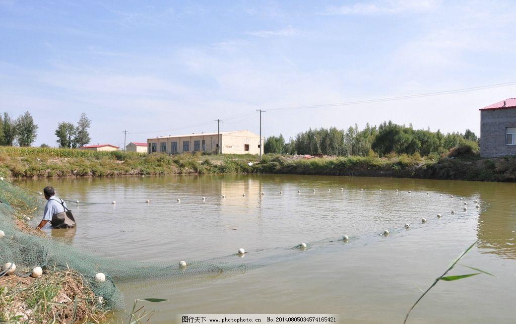 农村景观鱼塘设计图展示图片