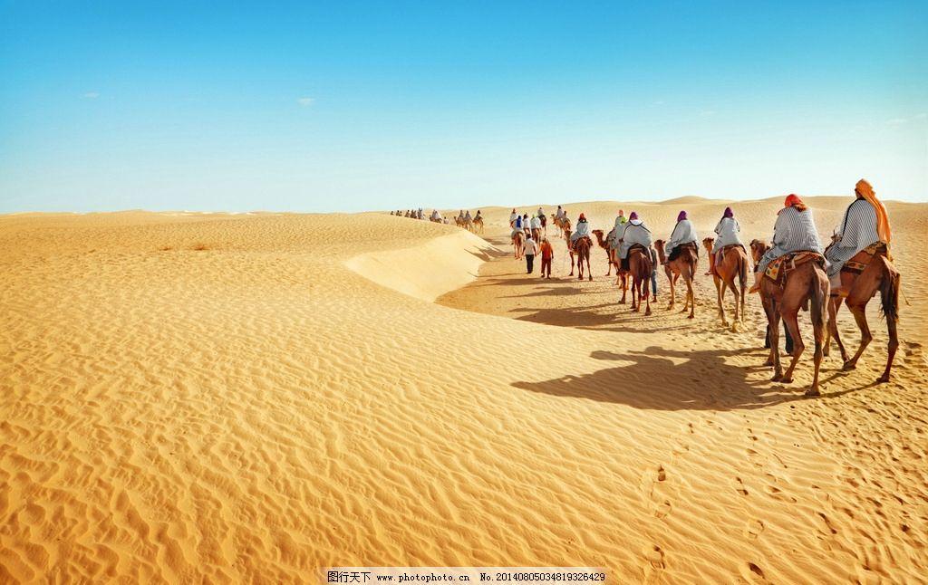 沙漠 自然风景 蓝天 白云 天空 蔚蓝天空 骆驼 驼队 荒丘 沙子