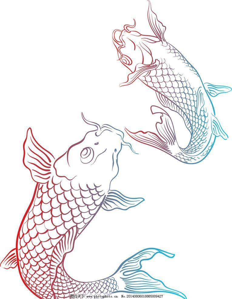 锦鲤 鲤鱼 动物 喜庆 节日