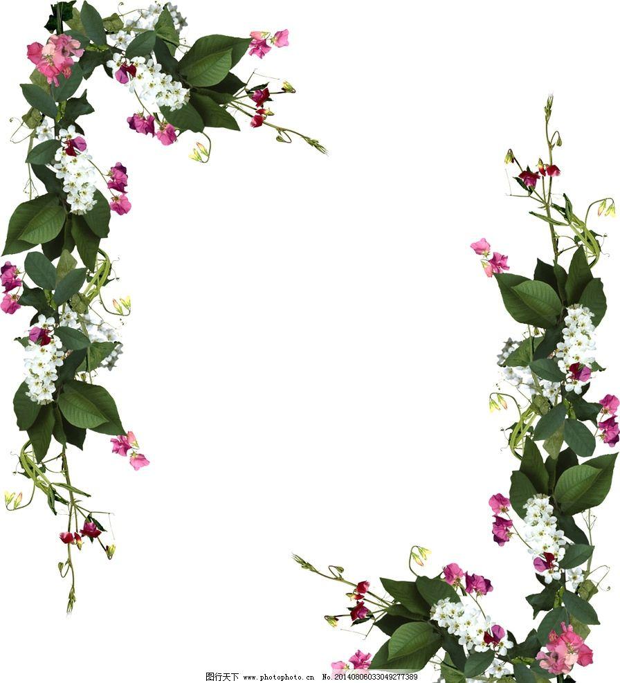 鲜花边框图片图片