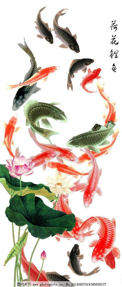 鲤鱼荷花素材图片