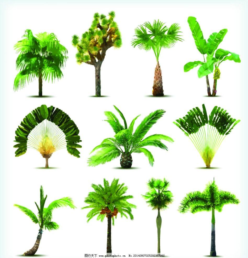 树木 矢量树木 园林 绿叶 绿植 树叶 绿树 环保 手绘树木 自然 树木贴