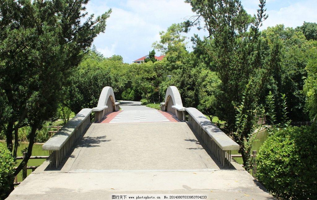 公园风景 公园 树枝 森林 蓝天 白云 国内旅游 旅游摄影 摄影 72dpi
