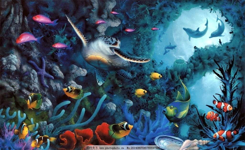 海底世界 海底 生物 乌龟 珊瑚 小丑鱼 多姿多彩 海洋生物 生物世界