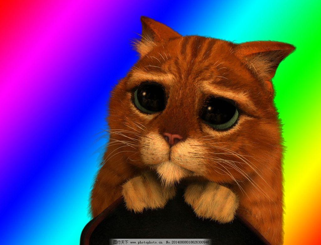 委屈猫猫 猫猫 猫 委屈 色彩 动物 其他 动漫动画 设计 72dpi jpg