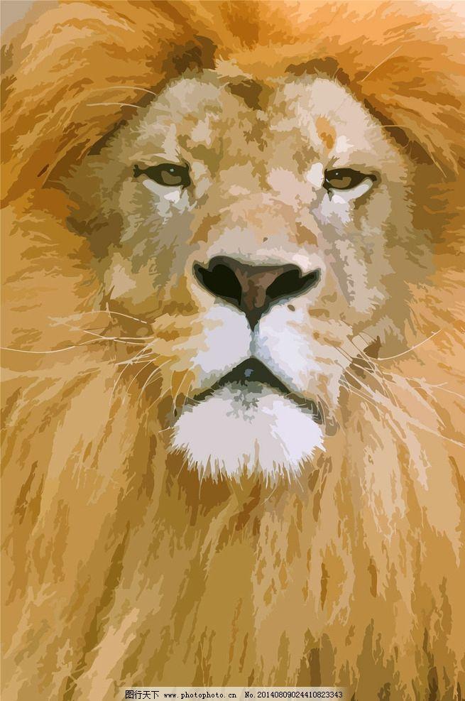 狮子 雄狮 狮子王 森林之王 狮子动物 野生动物 生物世界 设计 eps