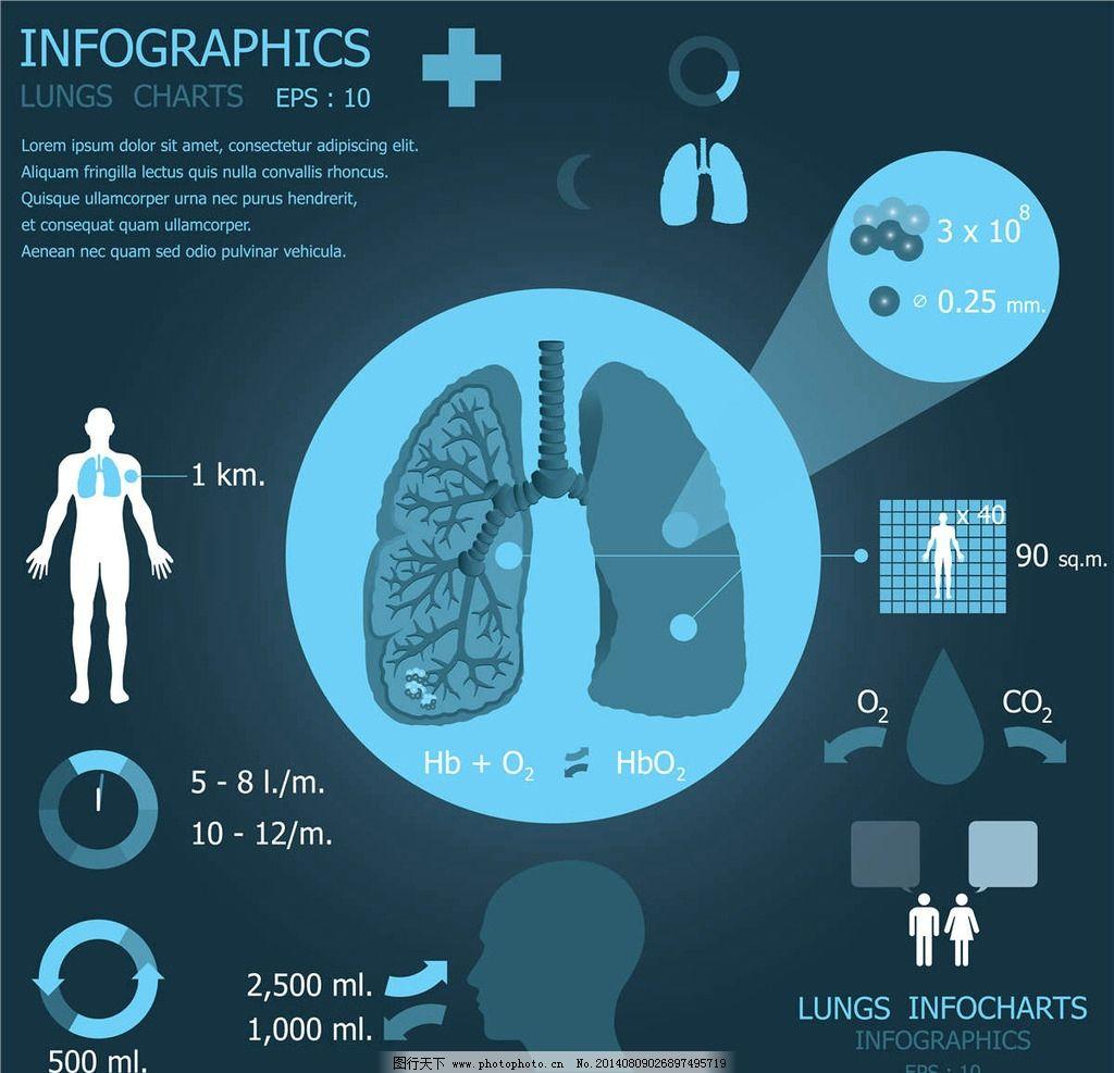 肺部医学医疗设计 肺部 医疗 医药设计 医疗设计 医学 医学科学 医学