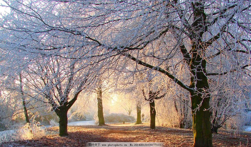 自然清新女生qq头像 雪景