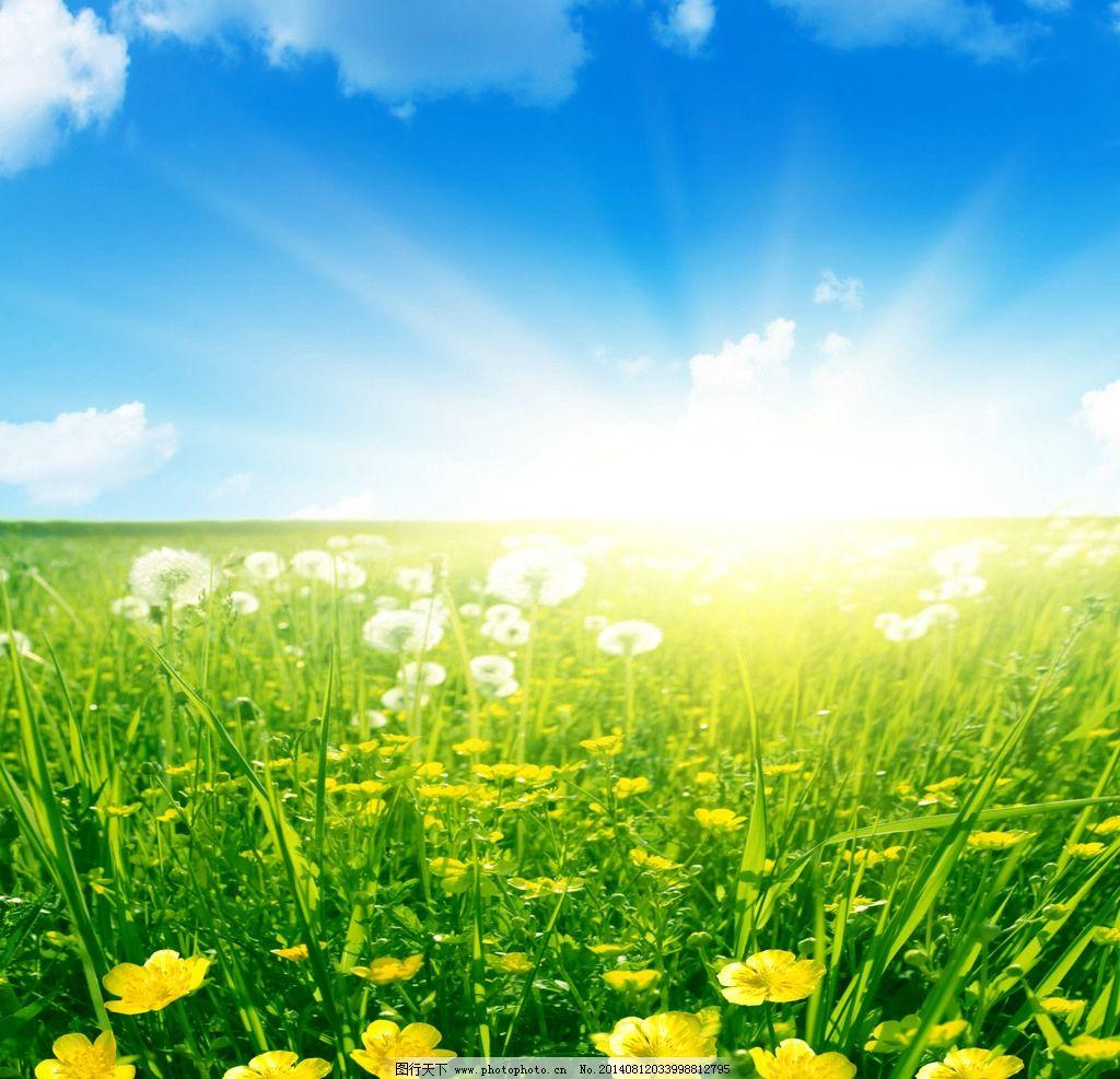 阳光可爱意境图