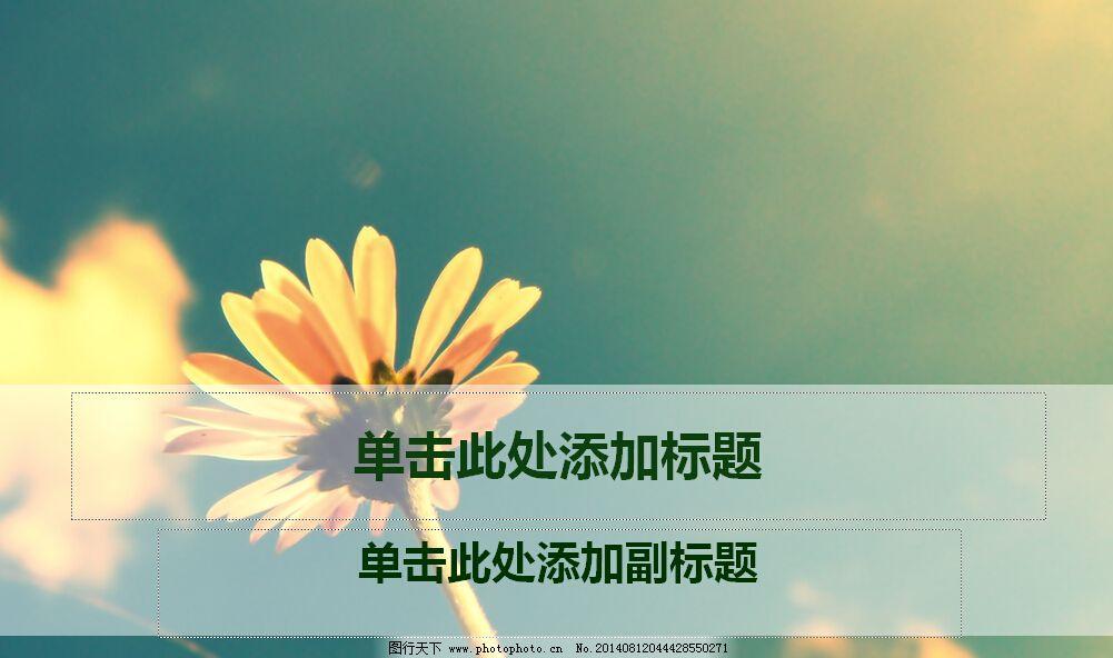 非主流色彩菊花ppt模板