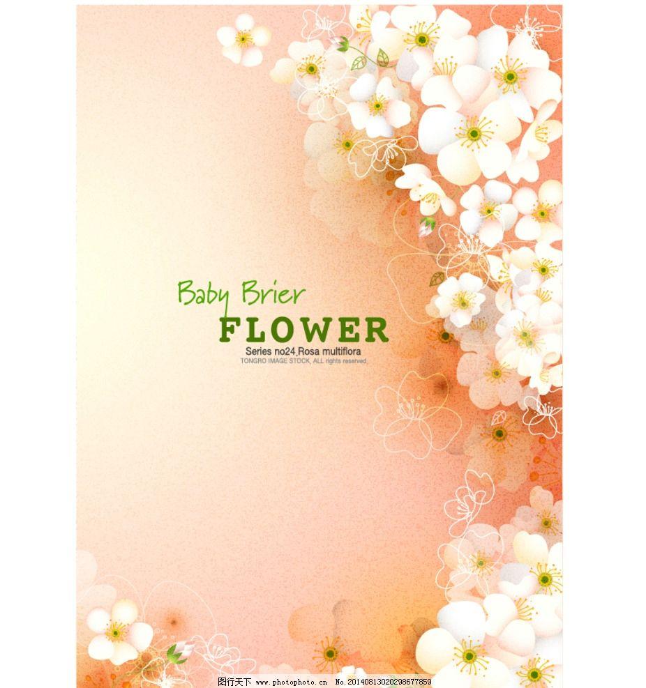 贺卡 卡片 手绘 背景 白色雏菊 花纹底纹 底纹背景 彩色包装纸