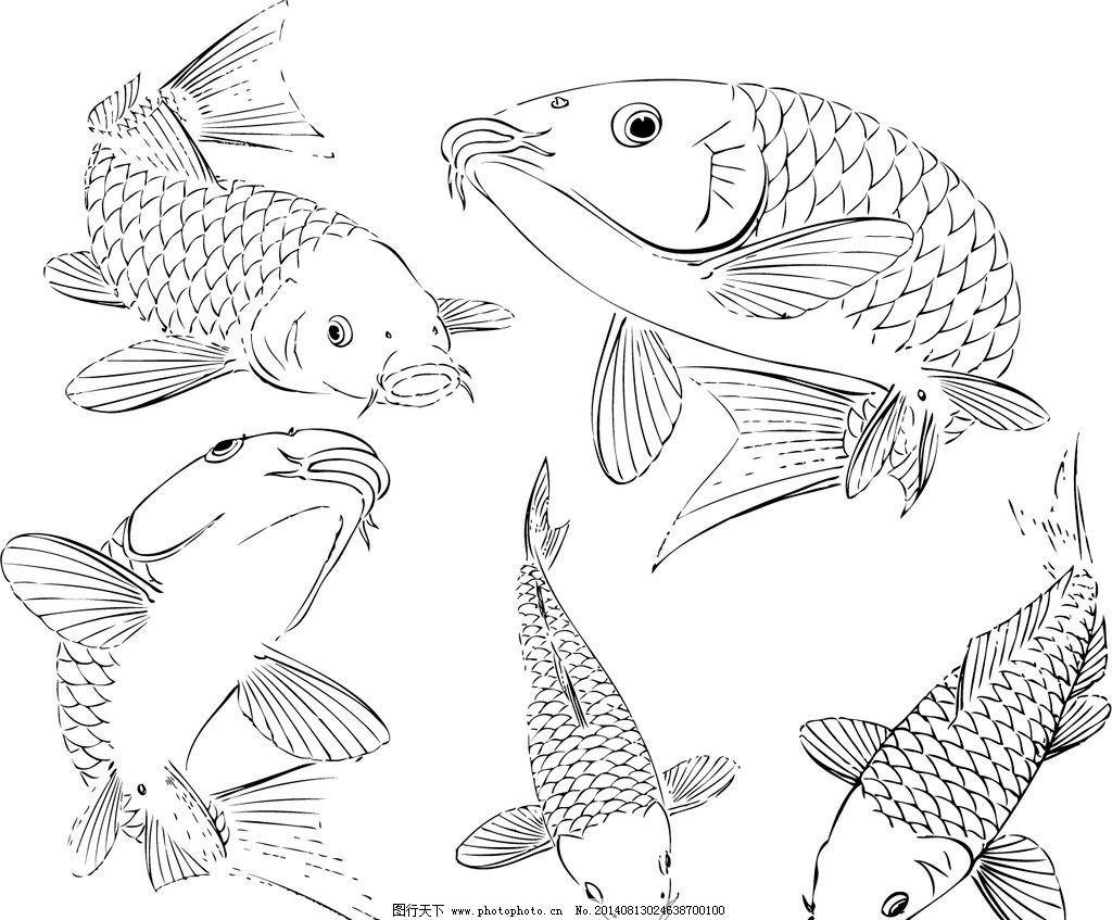 鱼跃龙门 线条