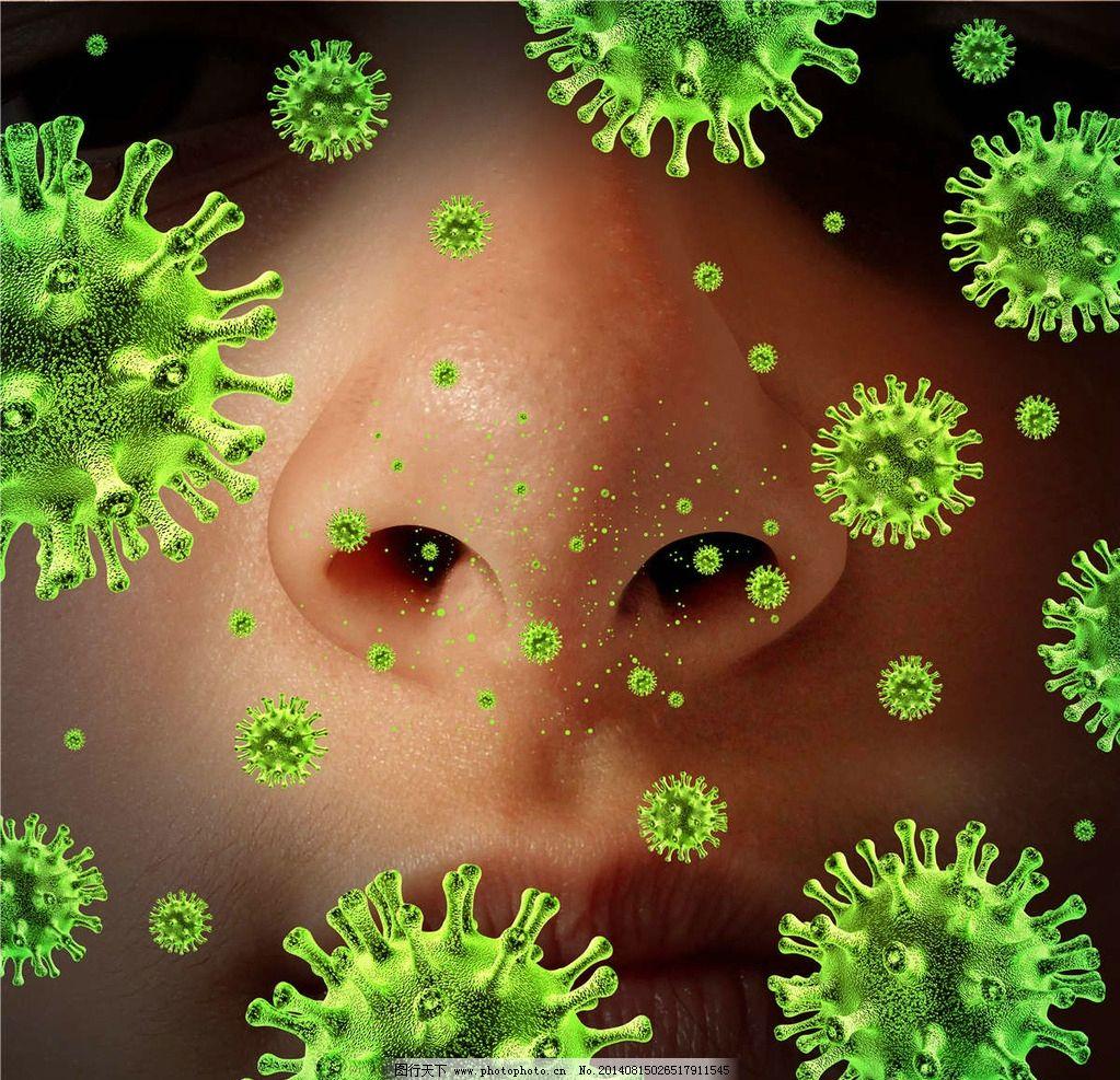 动物植物细菌真菌的细胞结构图