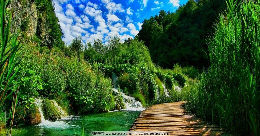 山间风景 植物园 绿色 自然 风光 公园 花草 路边大树 自然风景图片