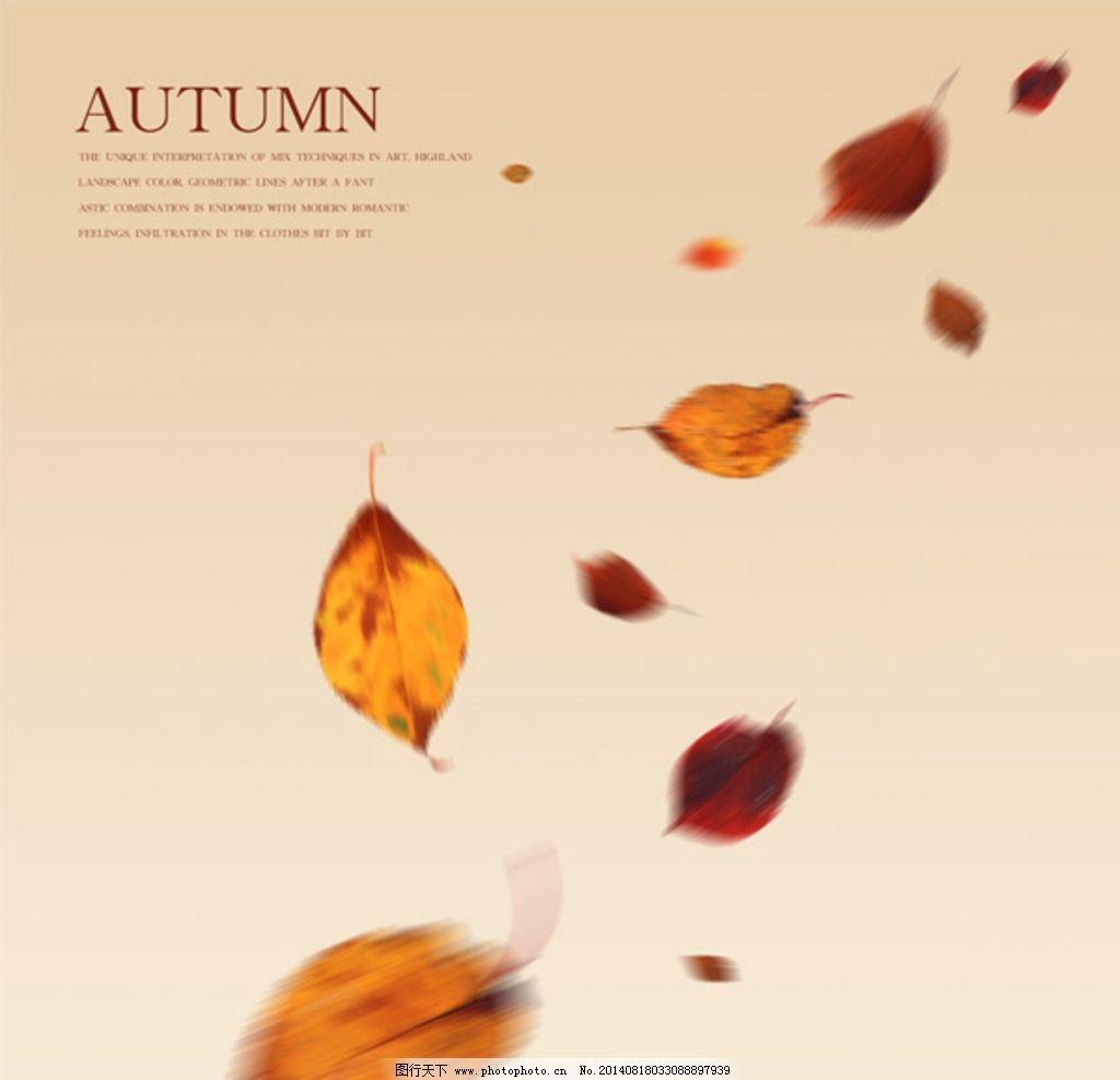 秋季落叶背景 黄色 树叶 飘落 飞舞的落叶 秋天图片