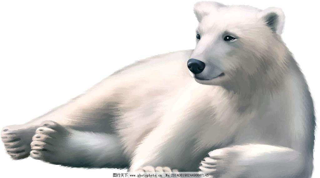 北极熊野生动物图片s11猴子一技能图片