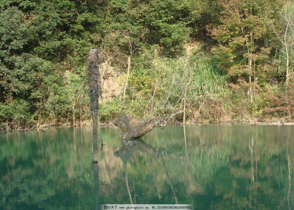 山水风景 水 树 山 绿色 倒影 自然风景 自然景观 摄影 72dpi jpg