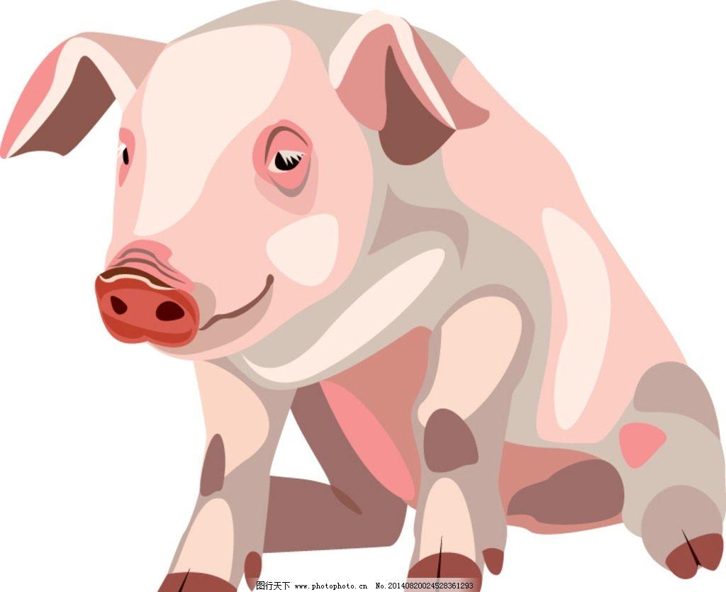 卡通形象造型 可爱卡通猪