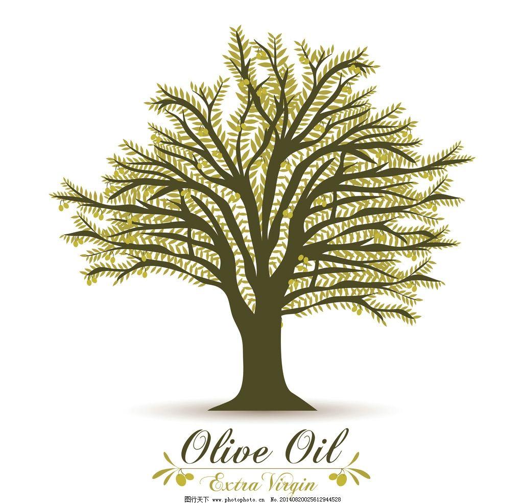 橄榄树图片_餐饮美食_生活百科
