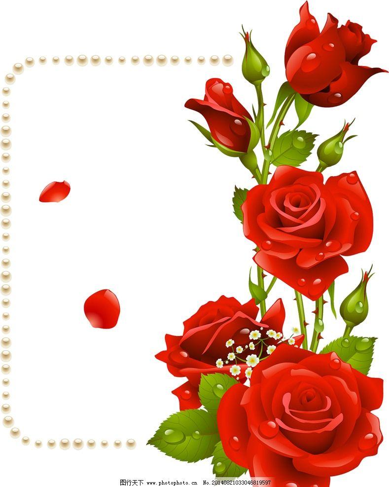 手绘彩色淡雅玫瑰