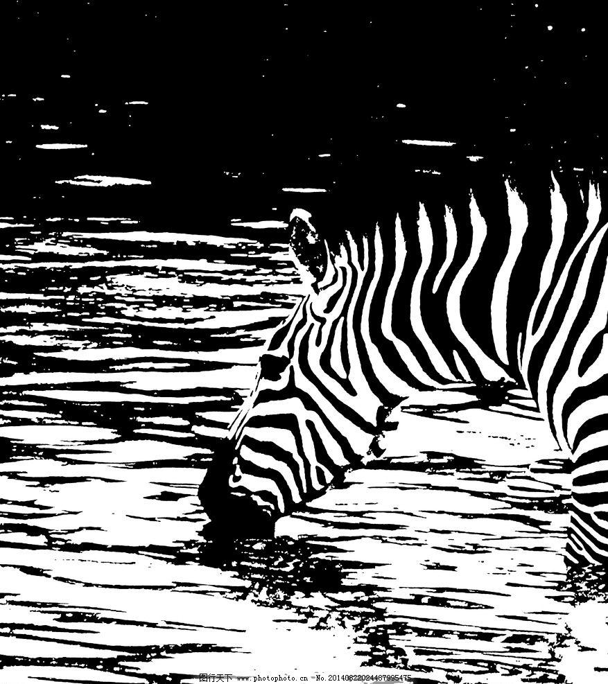斑马 饮水 设计 黑白 色块 野生动物 生物世界 300dpi jpg