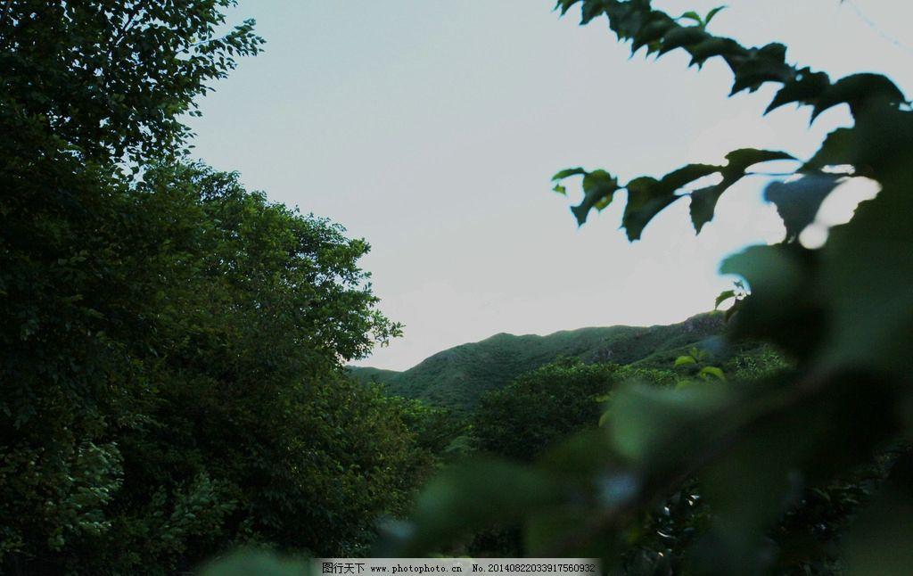 美丽风景 蓝天 草原 风景 山景 树木 草地 国内旅游 旅游摄影 摄影 72