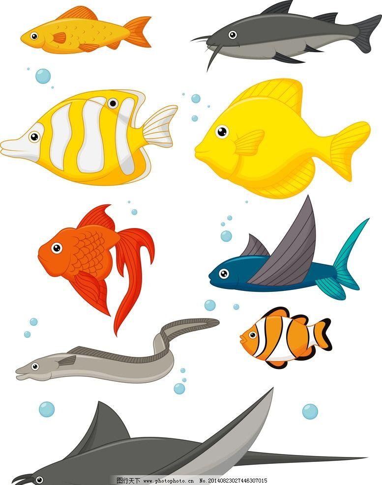 海洋生物 鱼 海底 海底世界