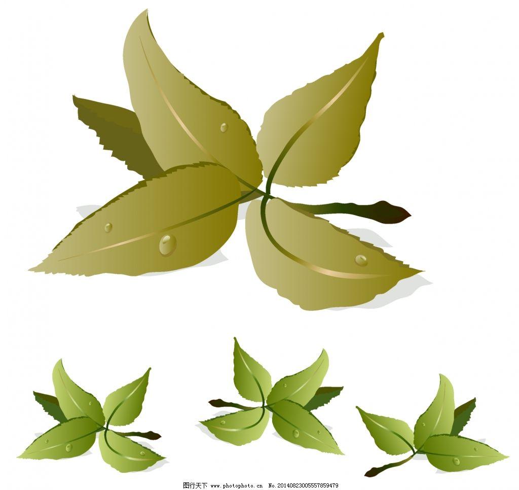 树叶矢量图免费下载 绿色叶子