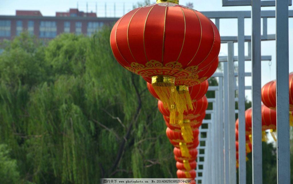 红灯笼 灯笼 大红灯笼 喜庆灯笼 树木 传统文化 文化艺术 摄影 300dpi