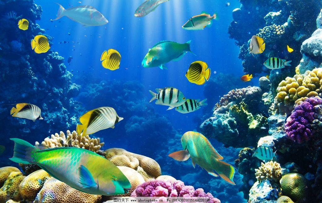青岛海底世界_海洋生物馆
