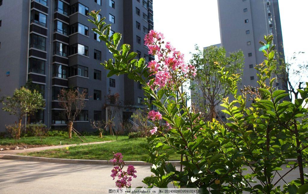 小区景观 景观 小区景色 样板间 房地产 地产样板间        欧式 高端