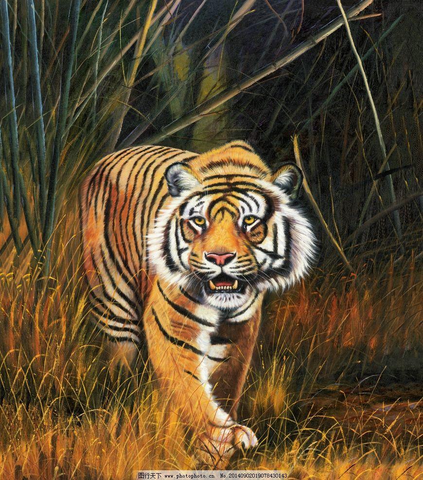 油画老虎 油画 老虎 虎 华南虎 猛虎 野生动物 动物 绘画艺术 绘画
