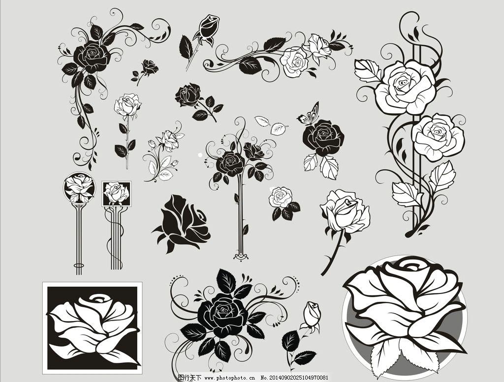 玫瑰花 玫瑰花素材 白描玫瑰 玫瑰线稿 黑白玫瑰 手绘玫瑰花 广告设计