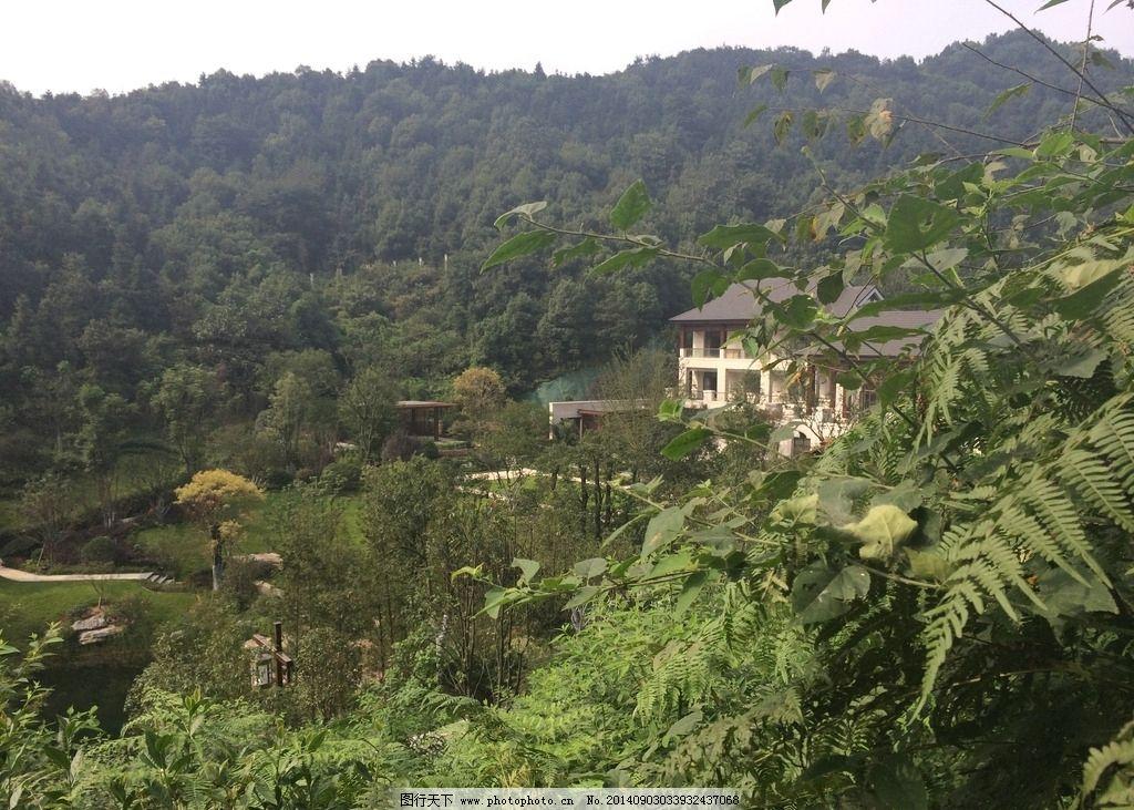 自然风景 树木 大自然 房子 蓝天白云 绿色植物 国内旅游 旅游摄影