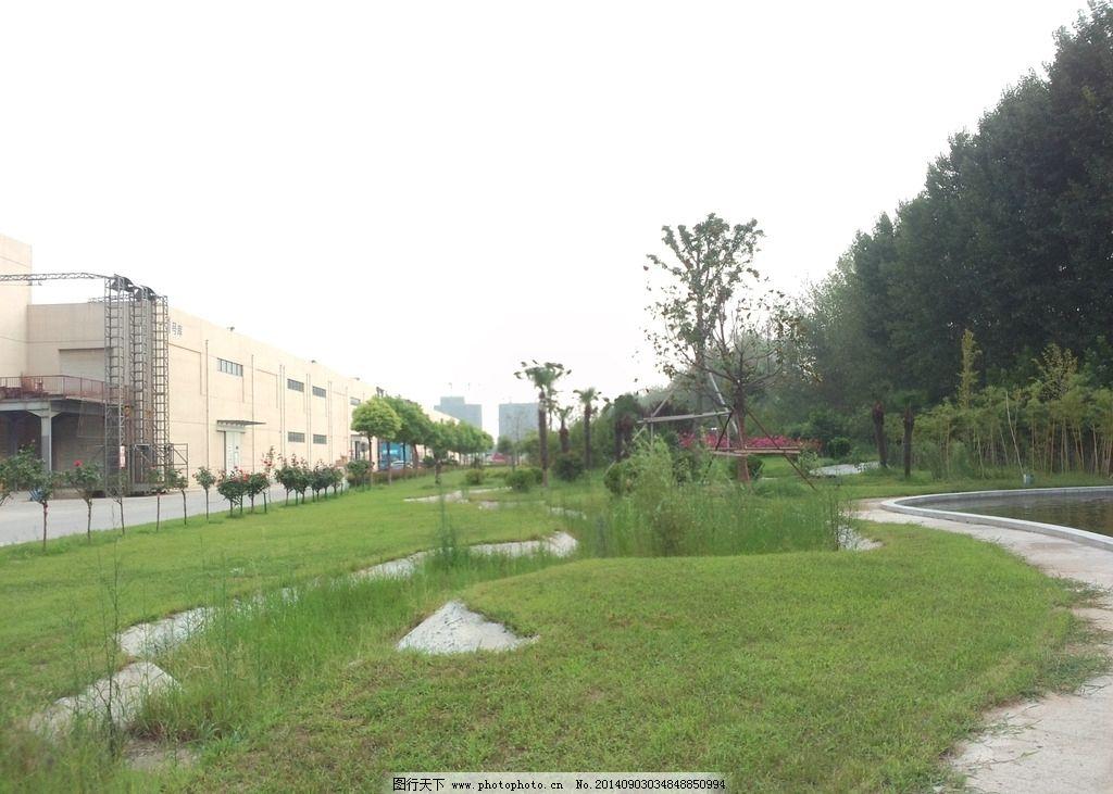 草地树丛 草地 树丛 绿化 天空 小路 城市一角 草 小草 摄影图 自然