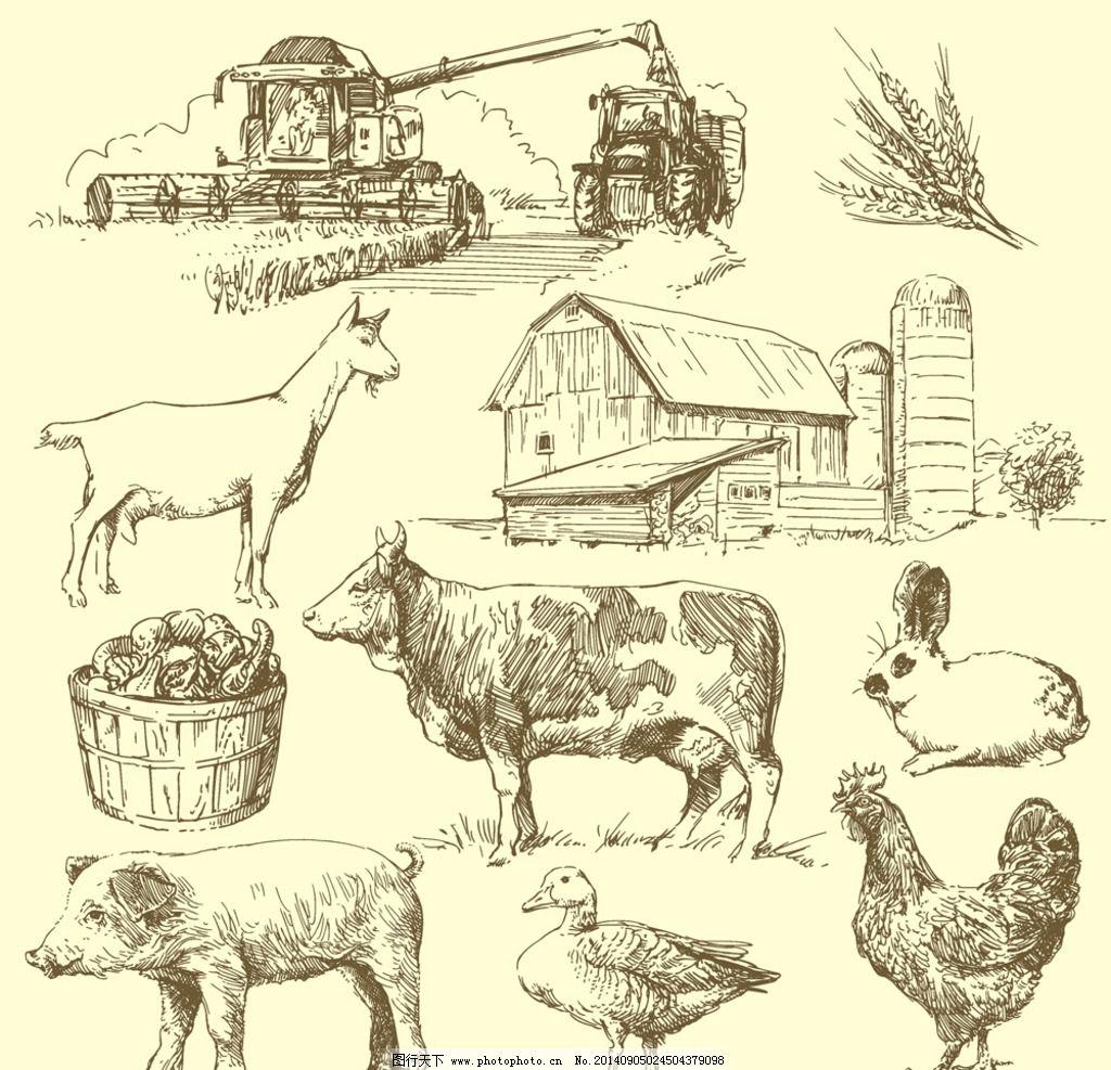手绘素描动物 手绘