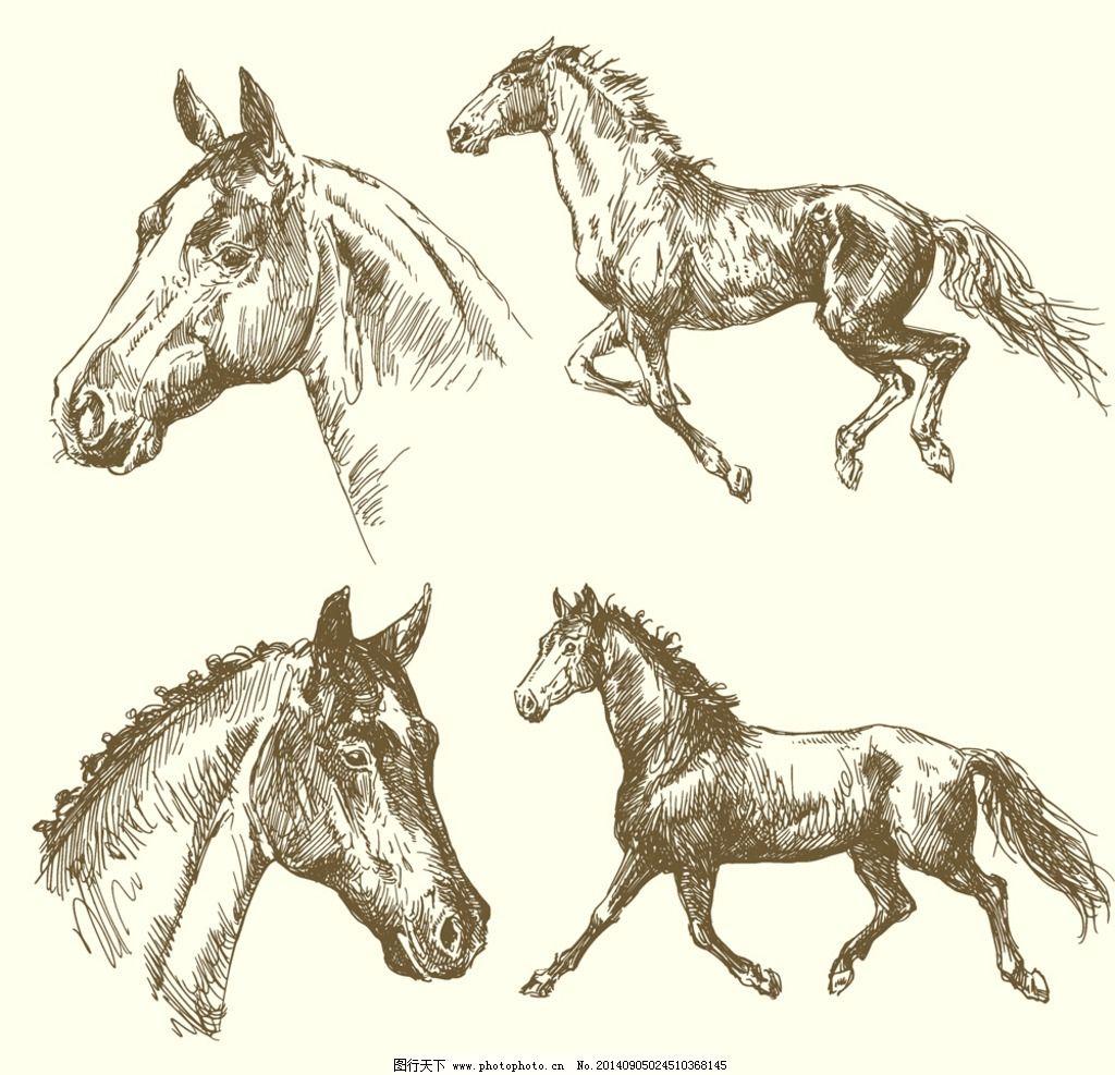 手绘骏马 手绘动物 宠物猫 手绘素描动物 剪影 复古 简笔画 插画