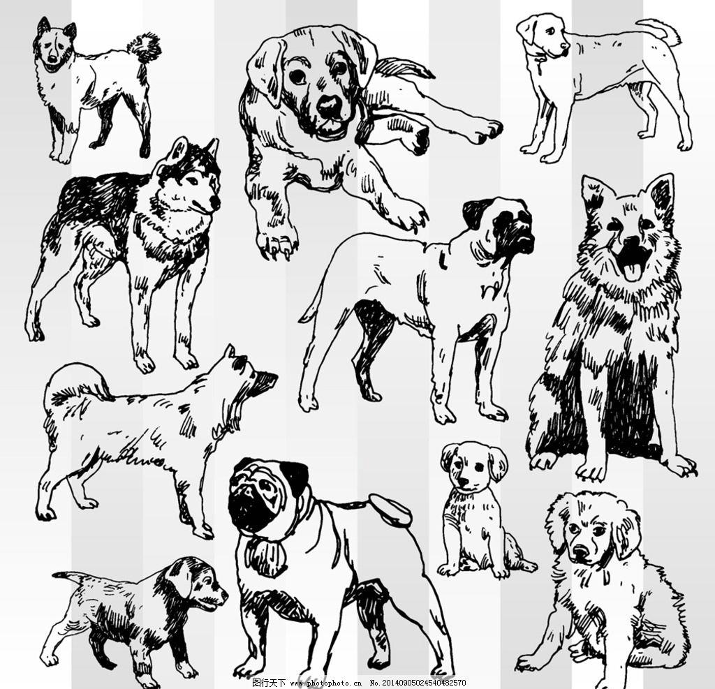小狗简笔画-手绘狗
