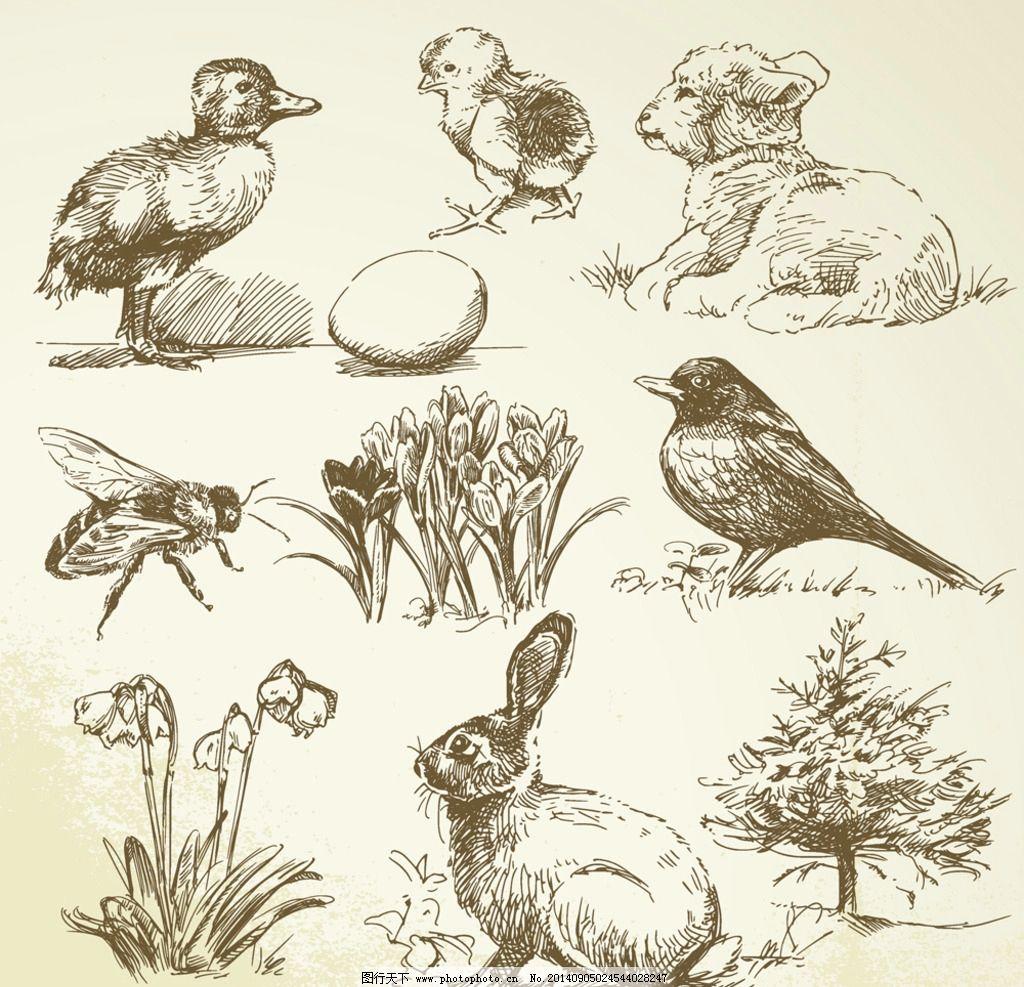 手绘动物图片