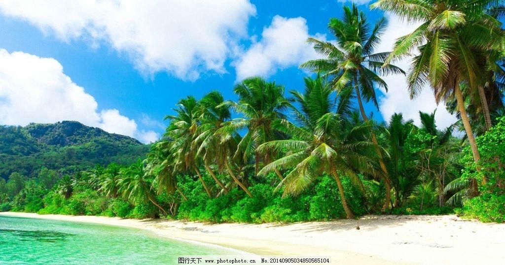 清爽海滩风景 马尔代夫 海边风景 自然风景 风景壁纸 海滩 椰树 蓝天