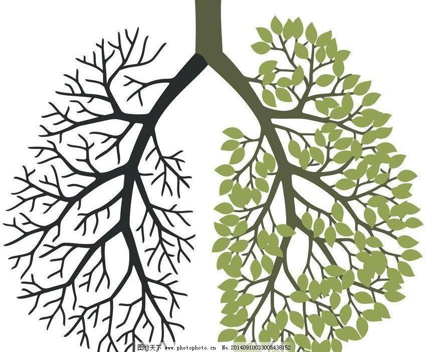 矢量素材 手绘 树枝 心脏 树枝心脏图片免费下载 心脏 树枝 创意 手绘图片