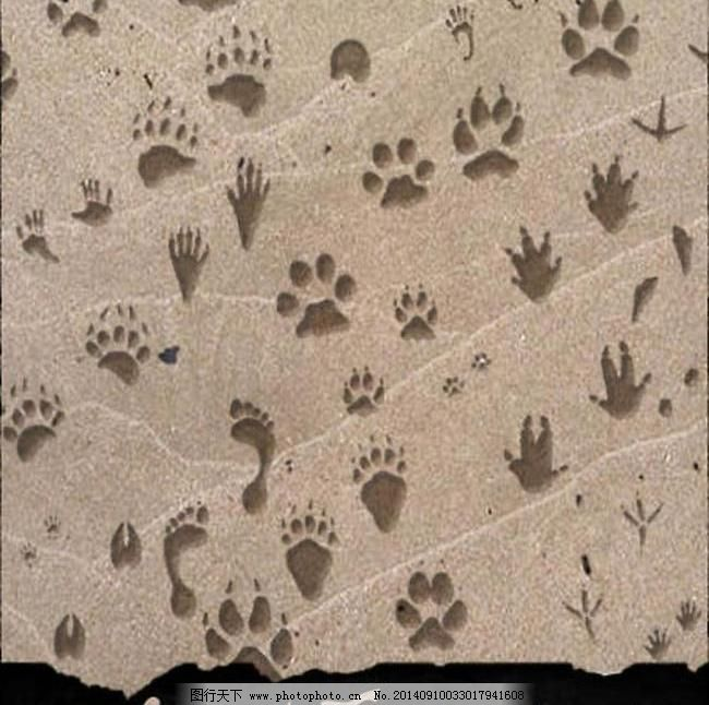 abr PS笔刷 笔刷 源文件库 各种动物脚印笔刷图片免费下载 ps笔刷 笔刷 源文件库 abr 各种动物脚印笔刷素材下载 各种动物脚印笔刷模板下载 各种动物脚印笔刷 其他笔刷 0 psd源文件 其他psd素材