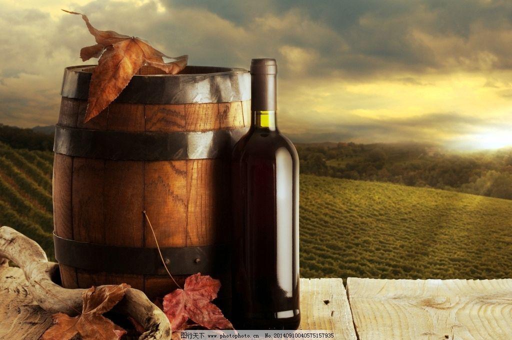 红酒 葡萄酒 葡萄酒广告