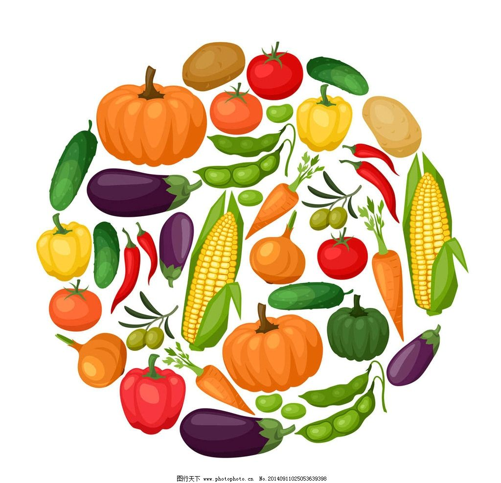蔬菜胡萝卜兔卡通