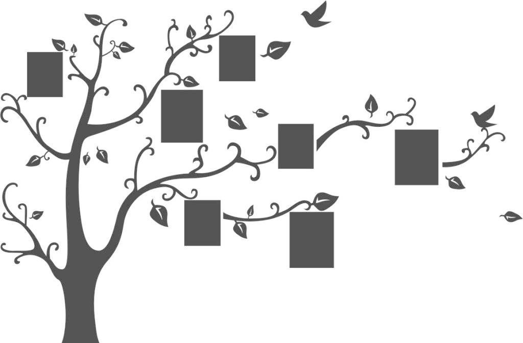 创意 大树 小鸟 照片 创意照片树免费下载 大树 创意 照片 小鸟 矢量