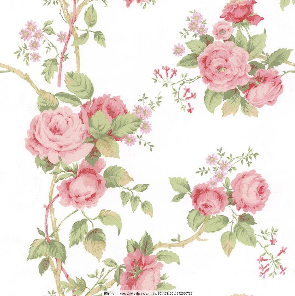 手绘蔷薇花设计图片素材