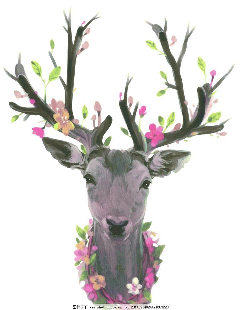 戴花环的鹿 彩色 鹿子花环 鹿角 小鹿 色彩缤纷 鹿头 野生动物 生物