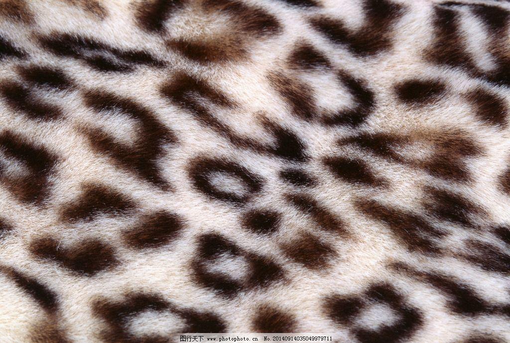 底纹边框 生活百科 生活素材 背景底纹 纹理 兽皮毛 兽毛 毛发 动物皮